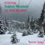 Hiking: Sulphur Mountain in the Winter
