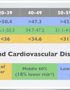 The next two vo max charts show ideal levels of fitness for reducing your risk cardiovascular diseases according to research from cooper also explained how find score easy way rh runnersblueprint