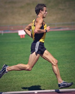 Hayden Shearman