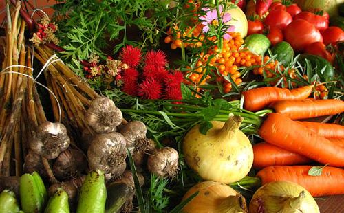 Découvrez six « super » aliments antiblessures
