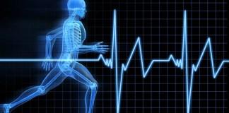 montre cardiofréquencemètre pour la course à pied et le running
