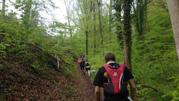 Trail de Liège métropole 2017 - montée vers le Sart-Tilmant
