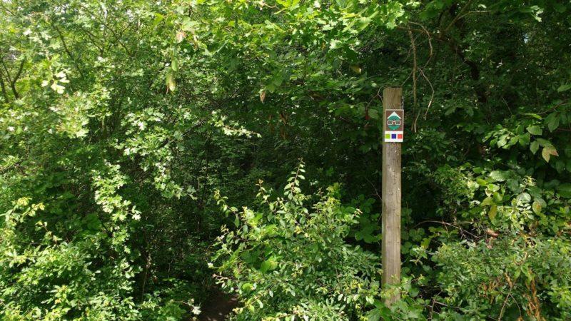 balisage parcours trail permanent Ampsin
