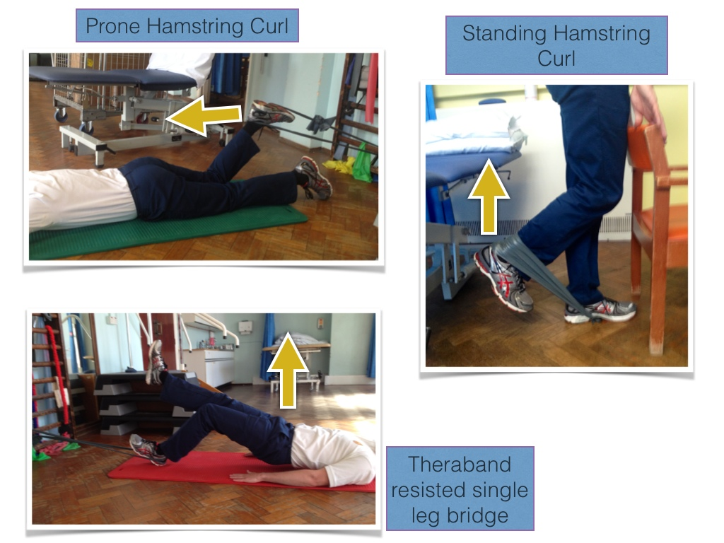 Proximal Hamstring Tendinopathy Reflection On Rehab