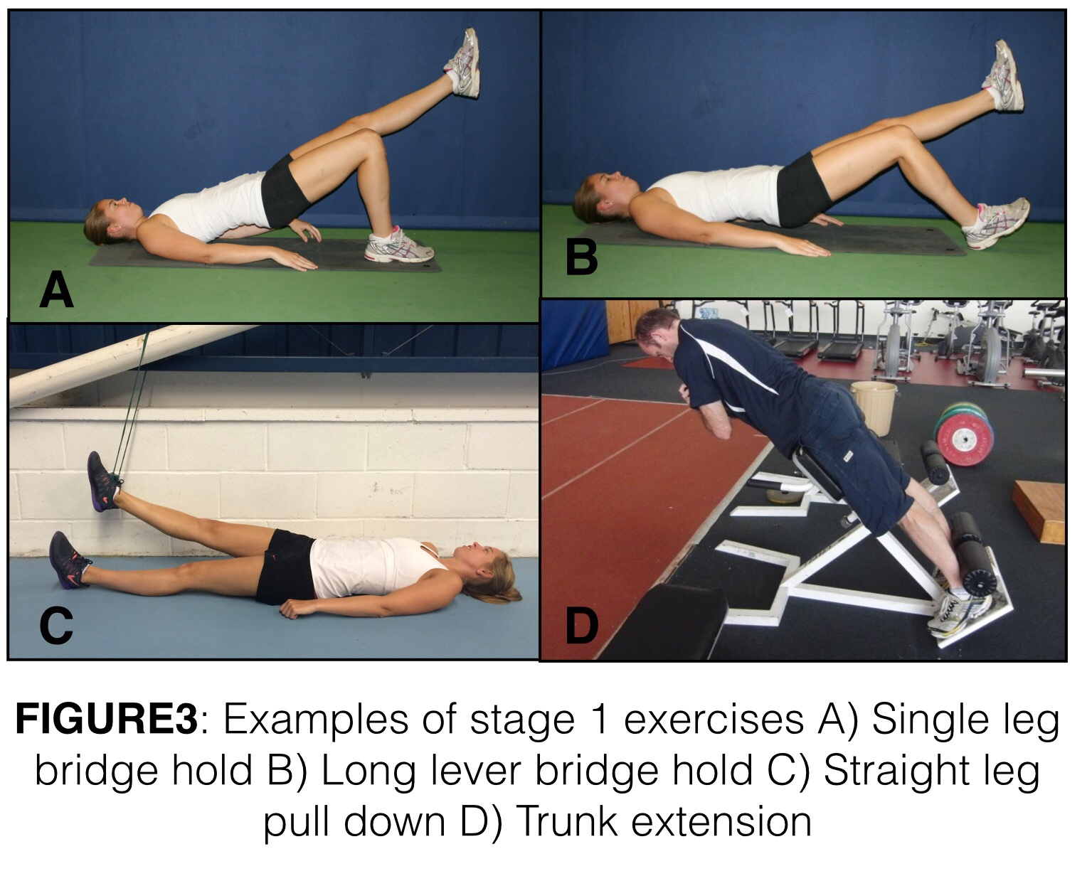 Podcast on clinical management of Proximal Hamstring ...