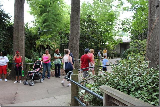 Zoo 047