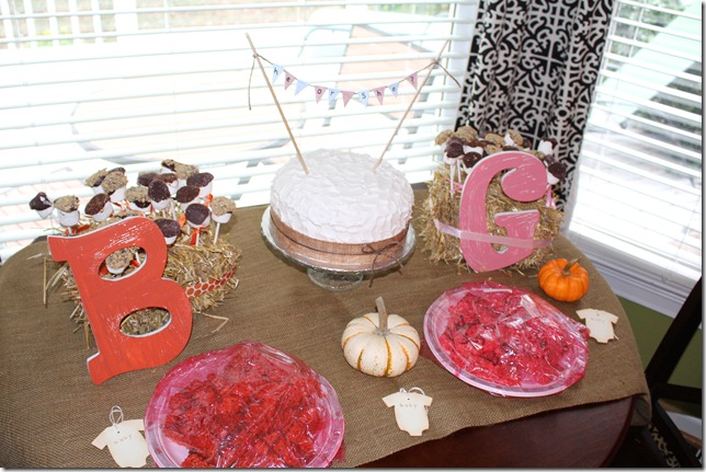 Baby Gender Reveal Party 029