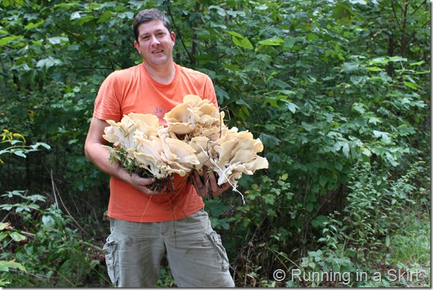 mushroom_hunting_hen_of_the_woods