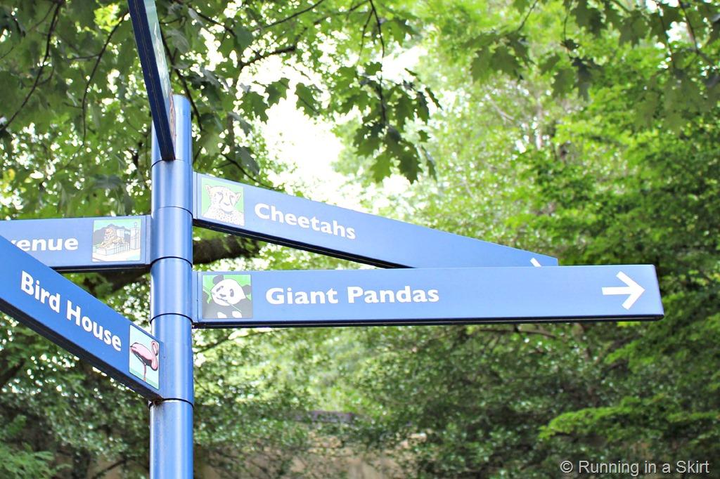 national_zoo_panda_sign.jpg