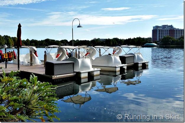lake eola ducks