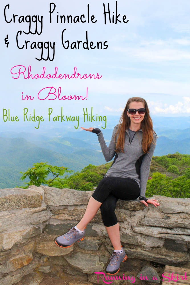 craggy gardens hike pin