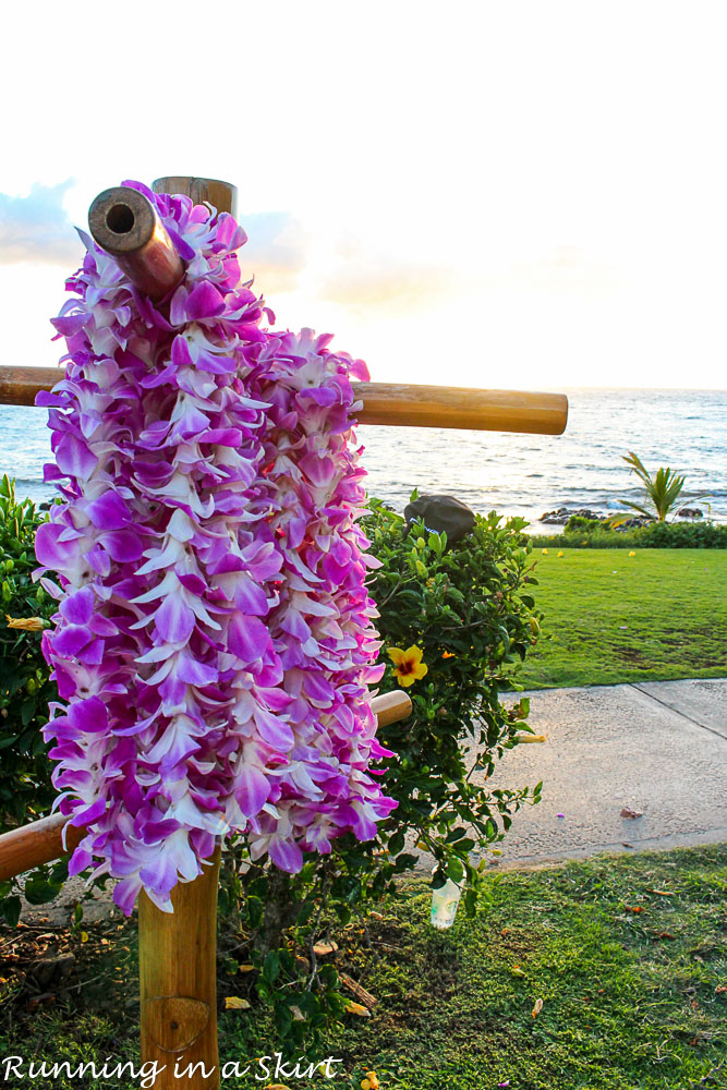 10 Ways to Stay and Explore Wailea on a Budget-2