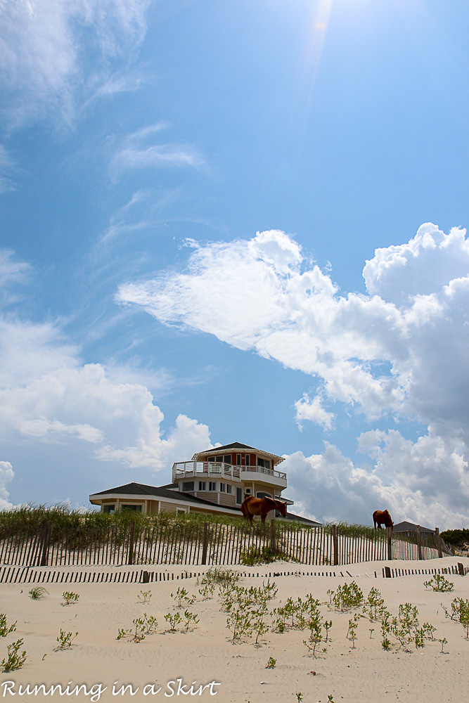 Outer Banks-365-25