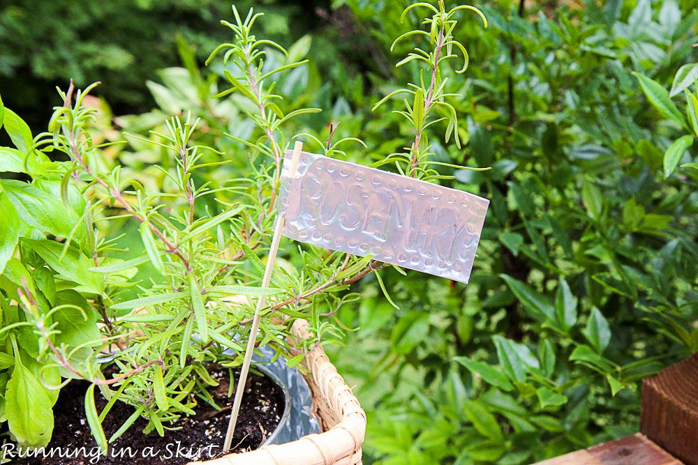 How to Make an Indoor Herb Garden-137-16