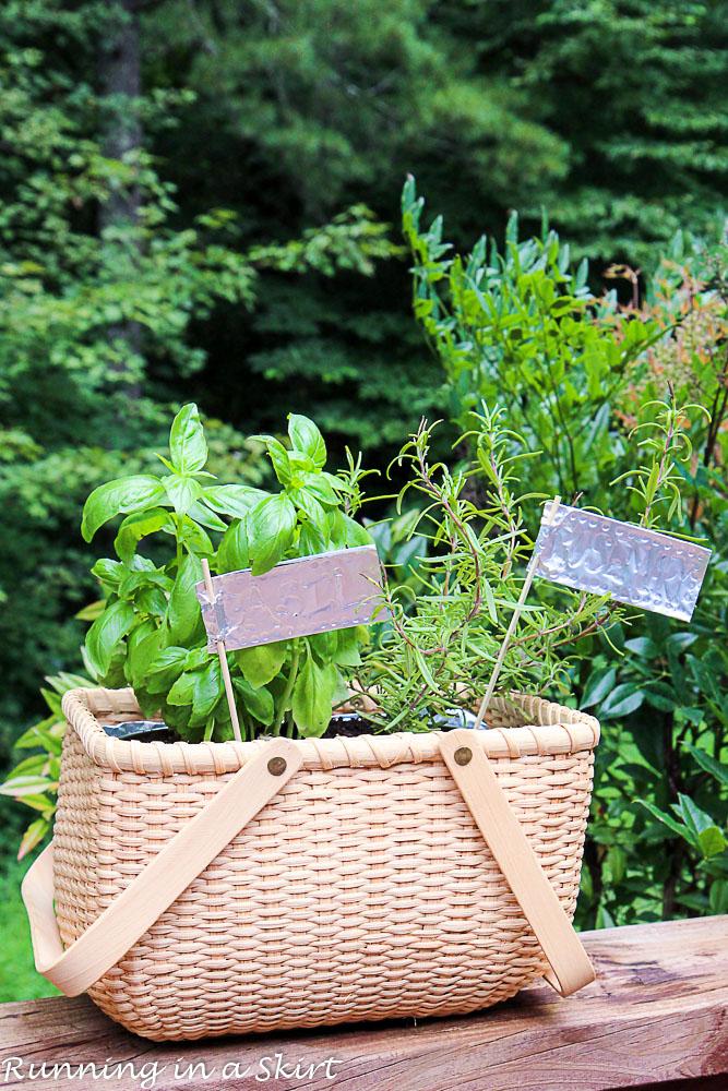 How to Make an Indoor Herb Garden-144-17