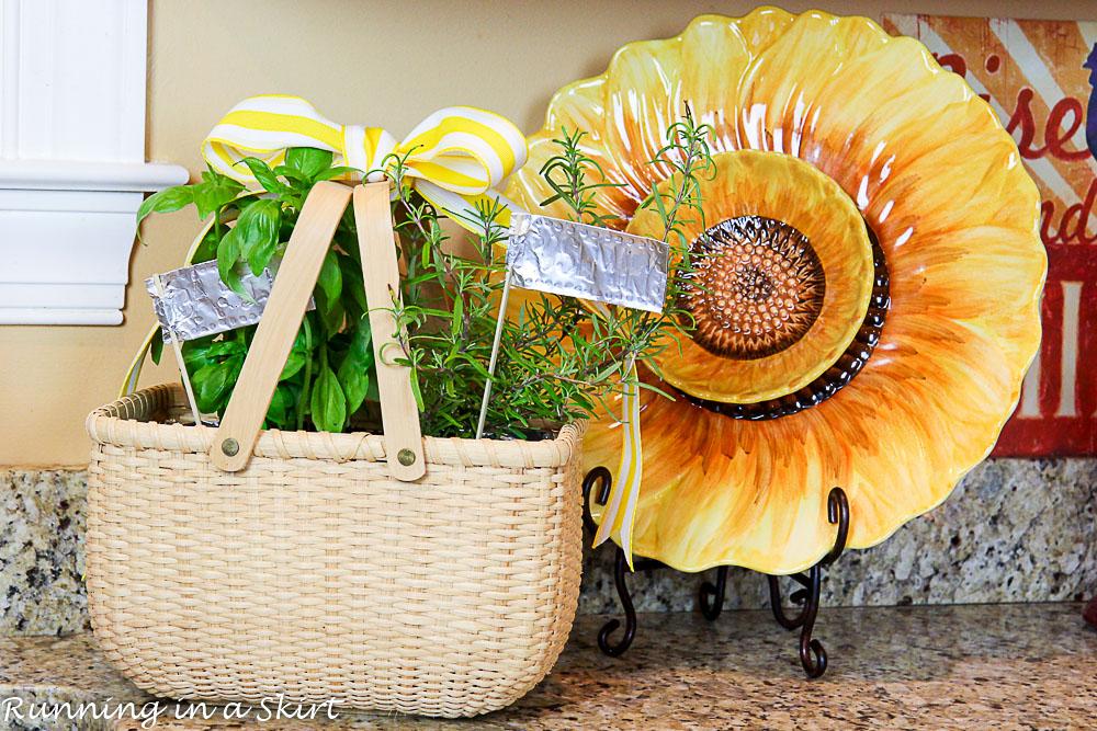 How to Make an Indoor Herb Garden-254-22