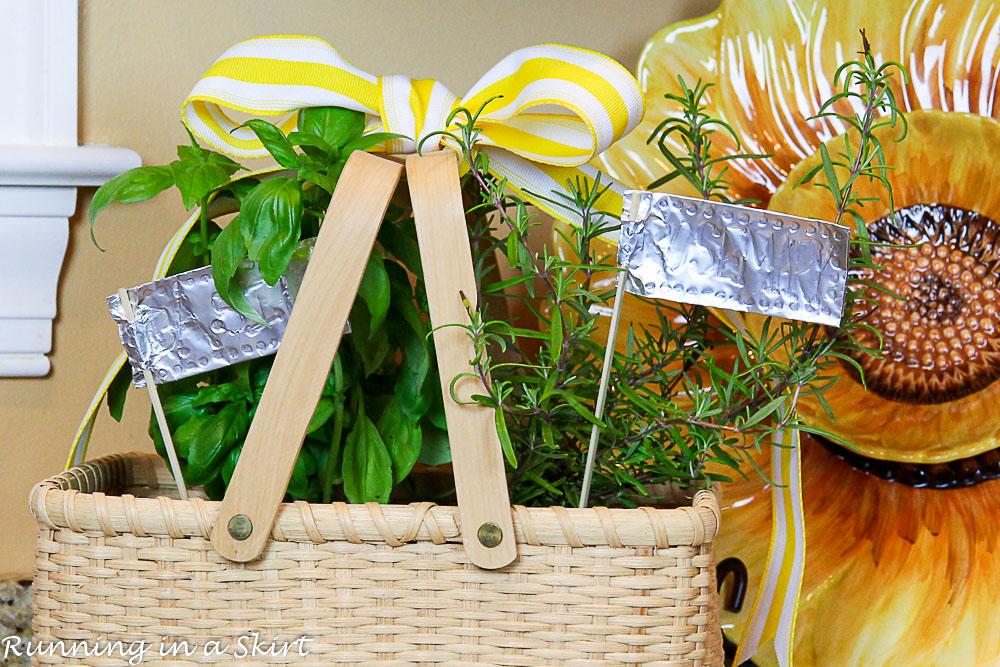 How to Make an Indoor Herb Garden-263-25