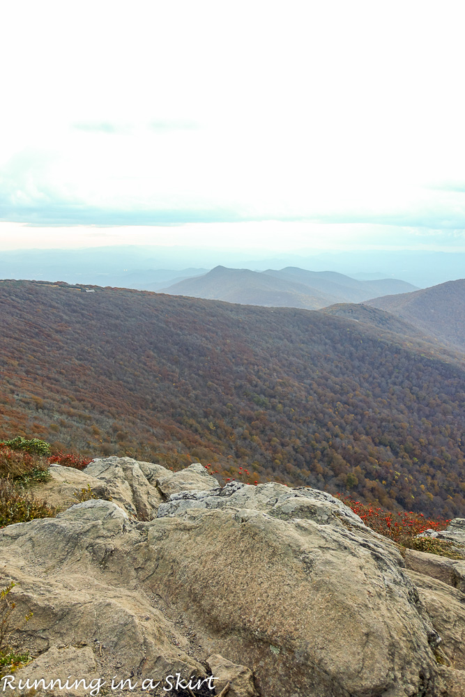 craggy-pinacle-in-fall-36