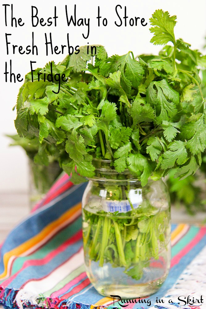 The Best Way to Store Fresh Herbs in the Fridge for Weeks! / Running in a Skirt