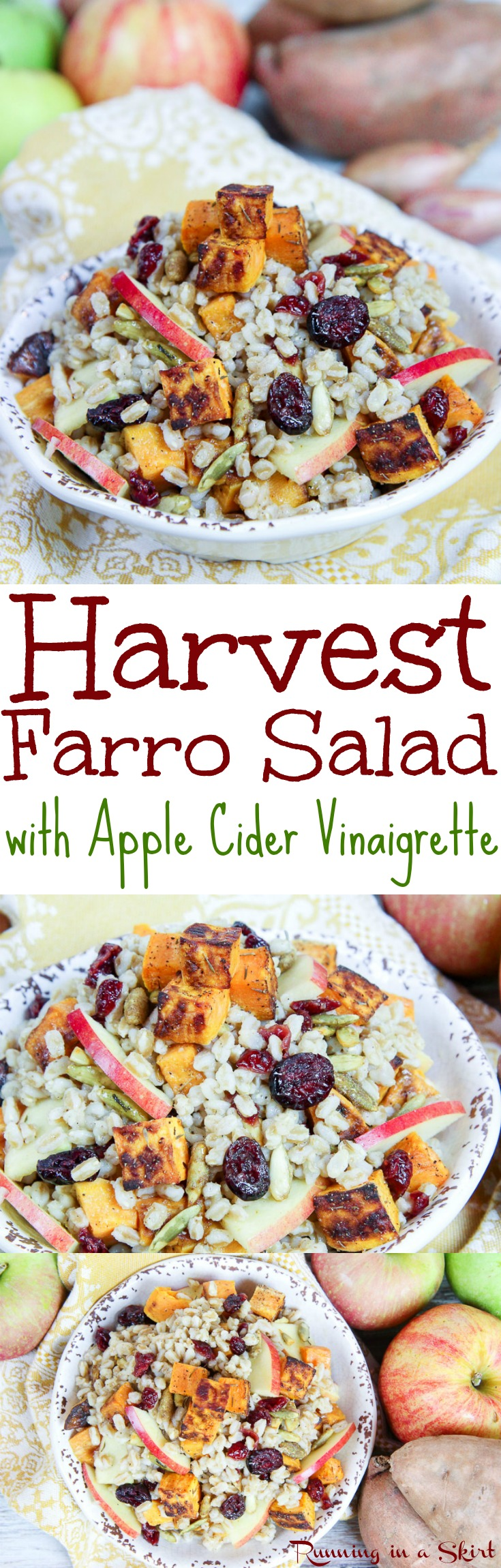 Harvest Farro Salad recipe with Apple Cider Vinaigrette.  A healthy fall or winter dish.  Perfect as a vegan Thanksgiving main dish or vegetarian side dish. Serve warm with roasted sweet potato, cranberry, apple and pumpkin seeds!  Packed with veggies. Simple, easy and delicious. / Running in a Skirt via @juliewunder