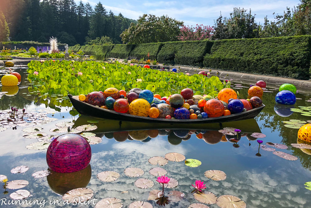 Chihuly at Biltmore Asheville