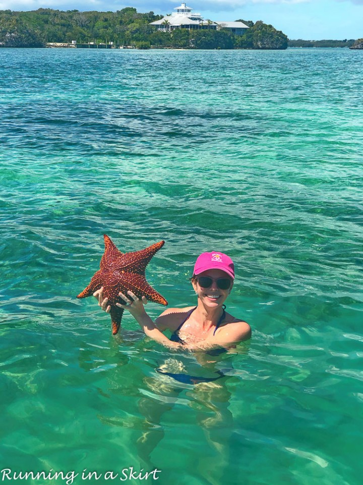 FInding starfish - What to do in Hopetown Bahamas