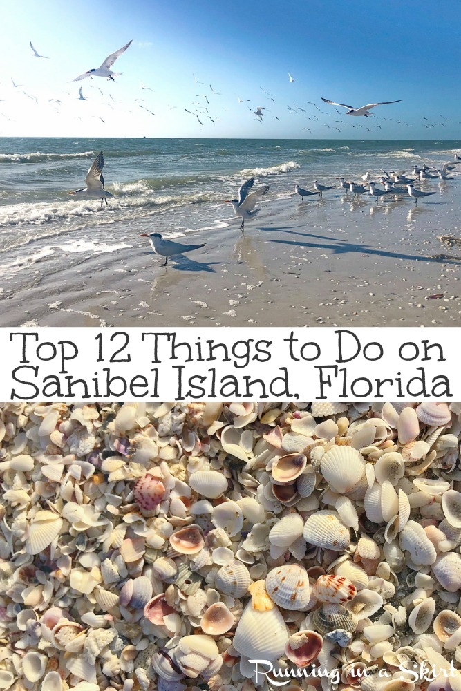 Top 12 Things to Do on Sanibel Island, Florida - including the best beach, shells, food and sunrise/ sunset.  Also includes the lighthouse. This gorgeous island is one of the best parts of Florida and a nature lovers paradise! Includes great options for kids too. / Running in a Skirt #sanibel #travel #travelblogger #wanderlust #beach #sunset #sunrise #nature via @juliewunder