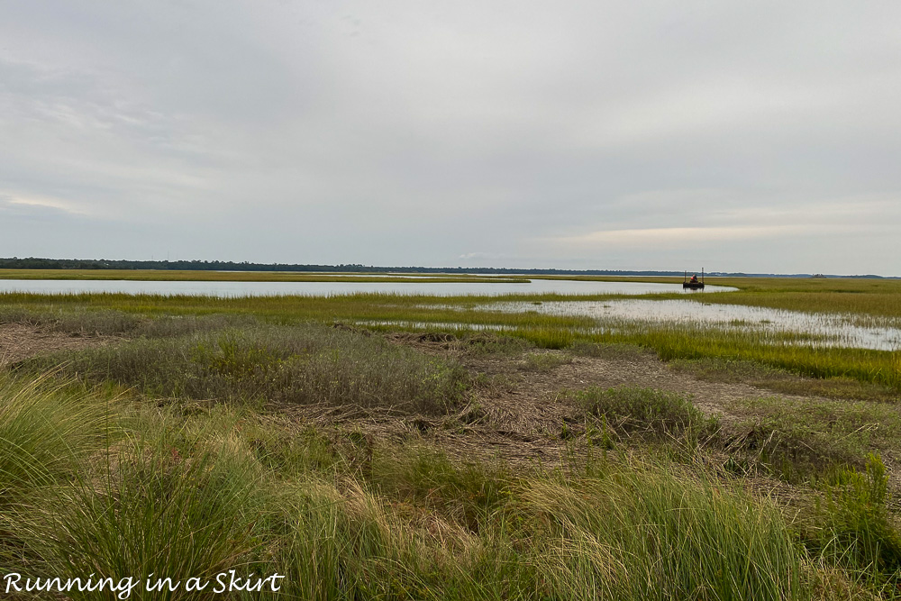 Marsh on Kiawah Island.