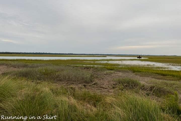 Marsh on Kiawah Island.