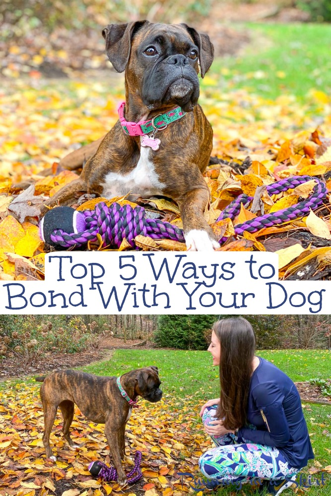 How to bond with your dog pinterest pin.