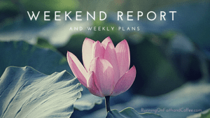 Weekend Report and Weekly Goals