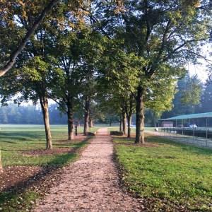 Summer Running | Morning Run | Hydration | Running Coaches' Corner | Running on Happy