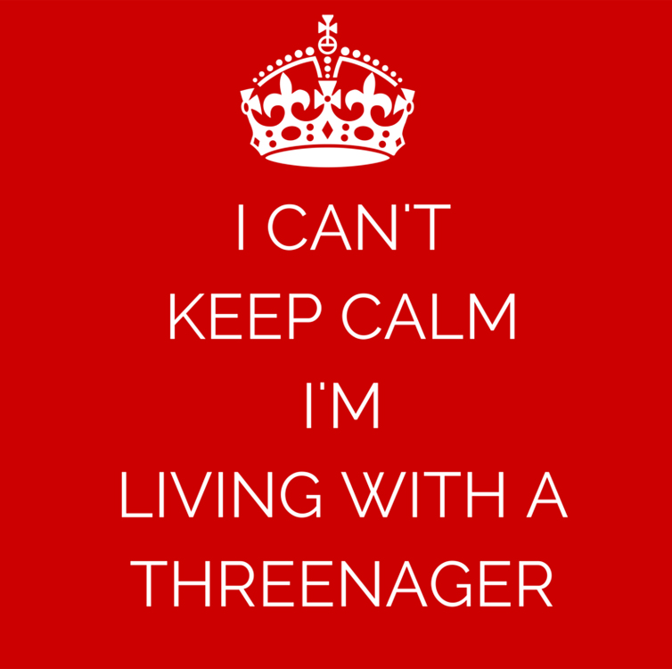 5 Terrible Awful Things About Having a Threenager | Running on Happy
