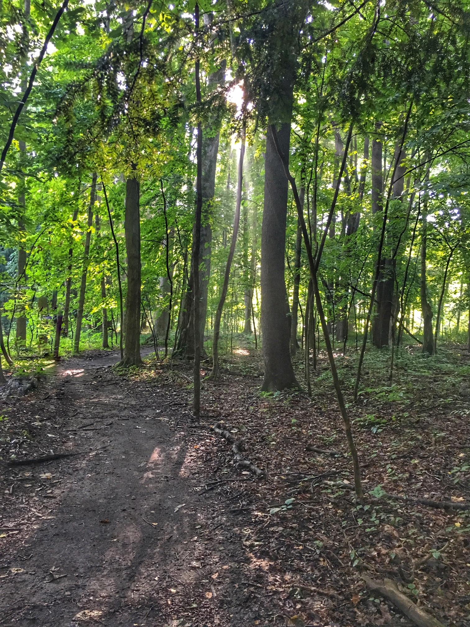 Burning River Endurance Run and Relay: Race Recap | Running on Happy