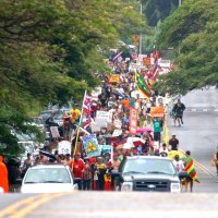 Hawaiians Fight For Their Land and Lives Against Biotechnology