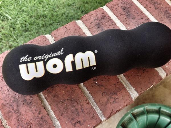 The Original Worm1