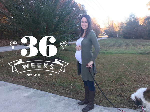 36 Weeks Running and Pregnancy recap