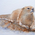 Watercolour Paintings. Otterly Gorgeous (IOA011). Artist: Ingrid Ormestad