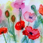 Watercolour painting. Field of Poppies (LBW009). Artist: Lorraine Brown
