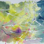 Watercolour painting. Charlotte's Garden Web (RWB0042) Artist: Vandy Massey
