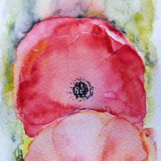 Watercolour painting. Poppy 2 (RWB0047) Artist: Vandy Massey