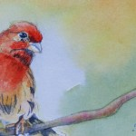 Watercolour Painting. Checking Things Out (SDR014) Artist: Sabine De Rode