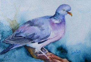 Watercolour Painting. Matron (SDR018) Artist: Sabine De Rode
