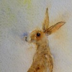 Watercolour Painting. What's That I Hear? (SPA001) Artist: Seonaid Parnell