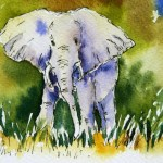 Watercolour Painting. Larger than Life (POB004) Artist: Polly Birchall