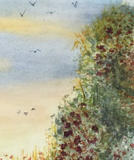 Watercolour painting. RWB0124 Coming In to Land Artist: Vandy Massey