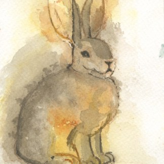 Watercolour painting. LBA040 Riverine Rabbit. Artist: Lori Bentley