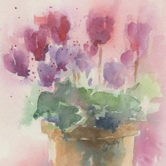 Watercolour painting. JBA004 Cyclamen Pot. Artist: Judy Barends