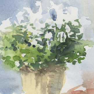 Watercolour painting. JBA022 Pot of Herbs. Artist: Judy Barends