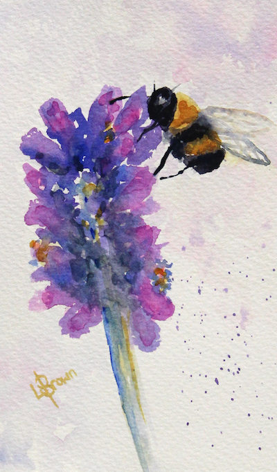Watercolour painting. LBW019 Lavender Honey. Artist: Lorraine Brown